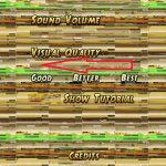 temple run 2 settings distorted